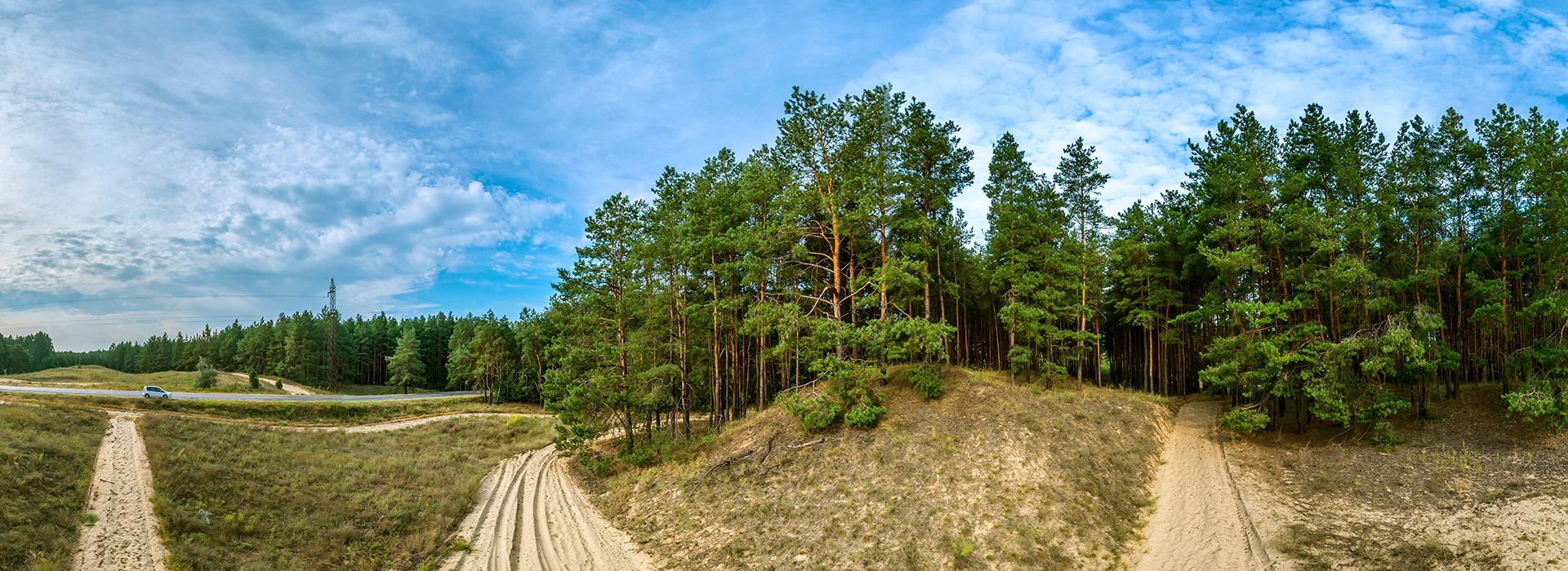 Страна лесов — Гилея